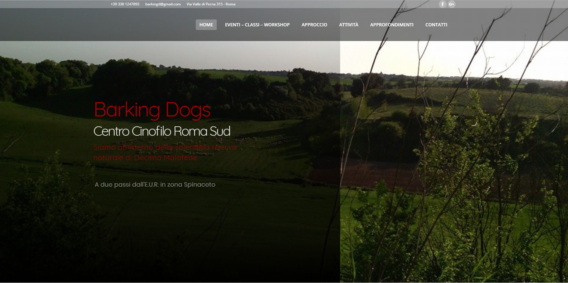 Braking Dogs sito WordPress e Social Media agenzia web roma