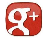 gestione profilo google + di un centro cinofilo