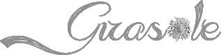 logo girasole fiorista roma montesacro